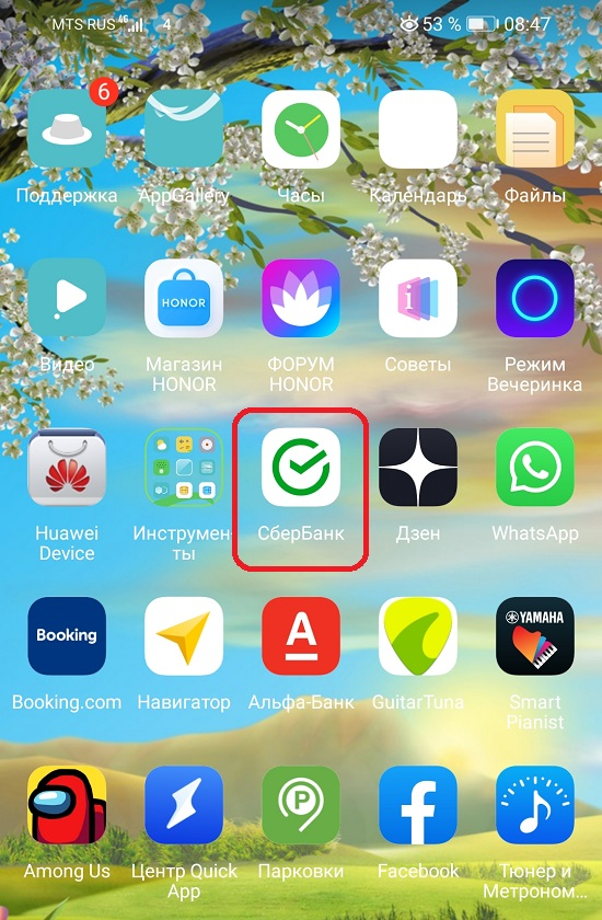 смотрим реквизиты в мобильном приложении сбербанка